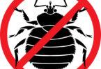 bedbugsymbol1